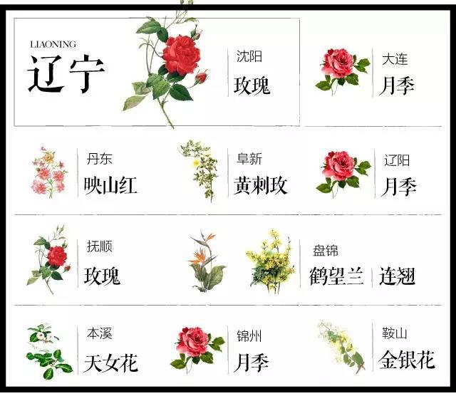 204个城市·史上最全中国各城市市花_19