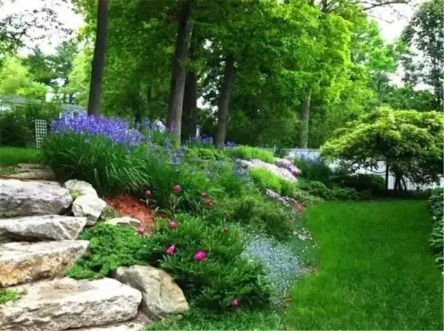 处理坡地景观高逼格方法,种草!种草!!_44
