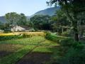 美丽乡村景观效果图PSD分层素材(3)