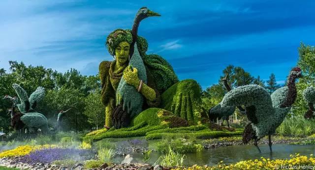 80个极美植物雕塑_9