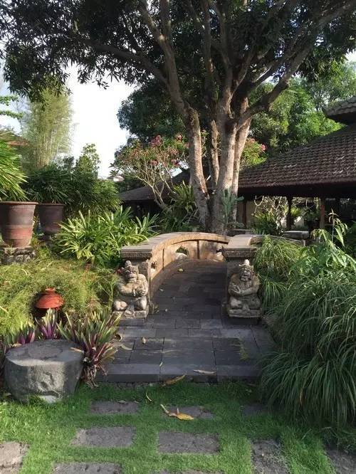 乡村庭院绿化景观,太美了,最好的图片展示在这里!
