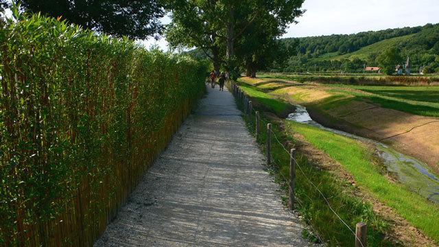 法国鲁昂EANA公园景观设计_9