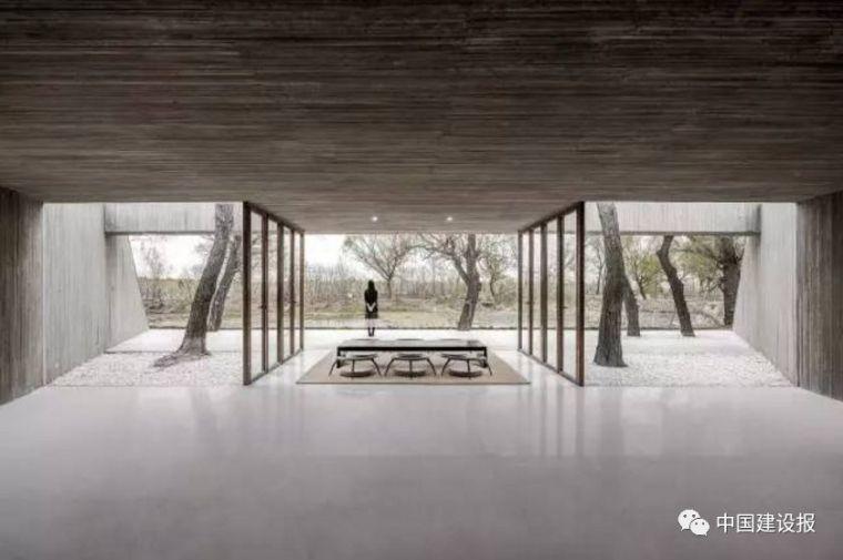 全球最佳建筑中国拿了3个,天津大学体育馆入列