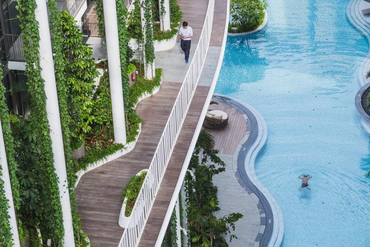 新加坡Tembusu雨林住宅-4