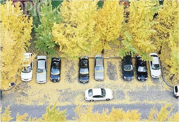 停车场设计规范 · 实用