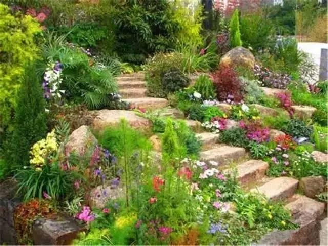 处理坡地景观高逼格方法,种草!种草!!_36