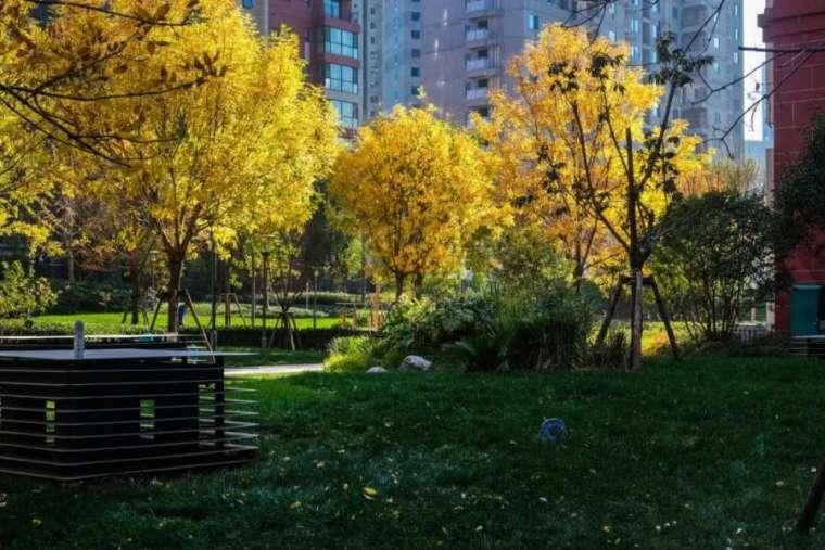 杭州良渚未来城住宅景观-16