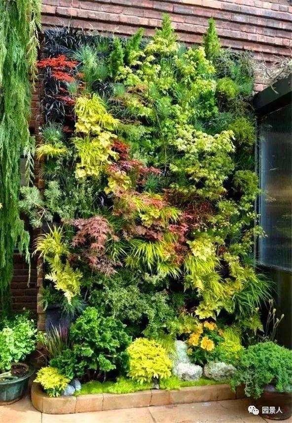 垂直绿化·会呼吸的墙壁_8