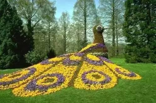 80个极美植物雕塑_46
