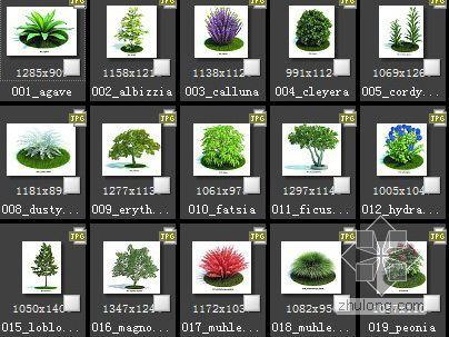 62种植物素材