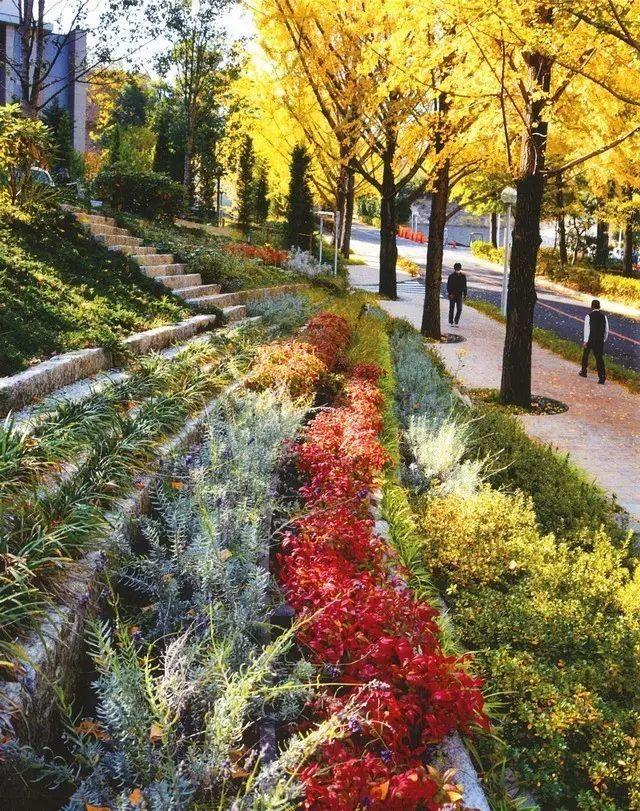如此美丽的校园景观,翘课不存在的。