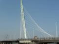 斜拉桥钢主塔施工工艺工法