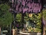 让你坐在万花丛中——庭院廊架