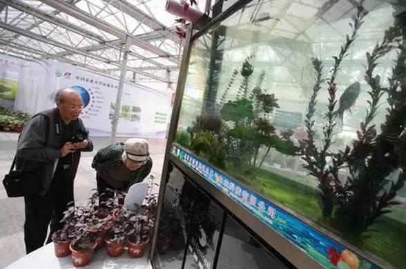 """零废弃,无污染,""""空心村""""变""""新庄园""""——推荐6大生态农业新_3"""