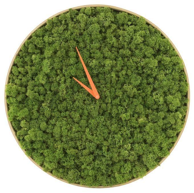 给家里添点绿丨爆魅力的时钟-zhong1.jpg
