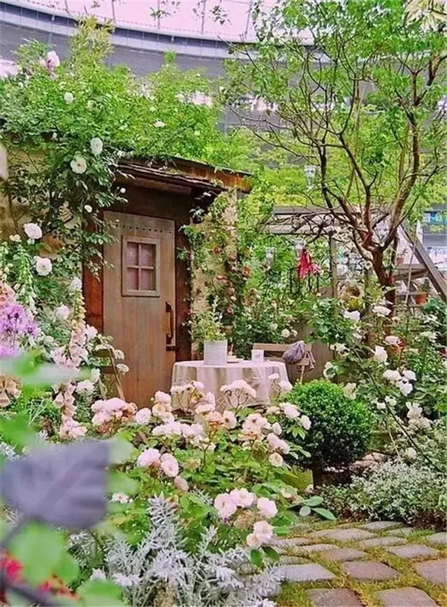 有个庭院,将是今生最大的幸福_1