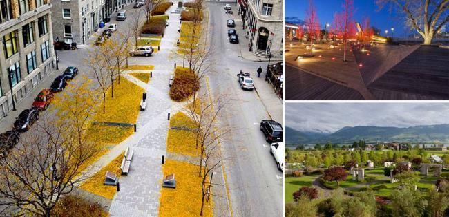 种树都不会,怎么做个合格的景观设计师?