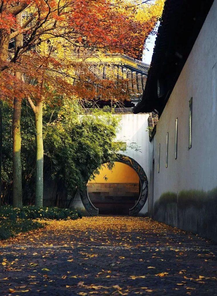这才是中国人的院子,秋天美到骨子里_9