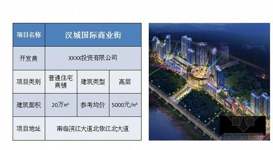 [陕西]城市综合体项目前期策划方案(图文并茂 120页)