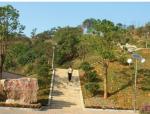 【江苏】某垃圾填埋场升级改造项目招标文件(约20亩,共199页)