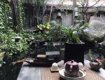 院子,承载着中国人寻常烟火的生活!