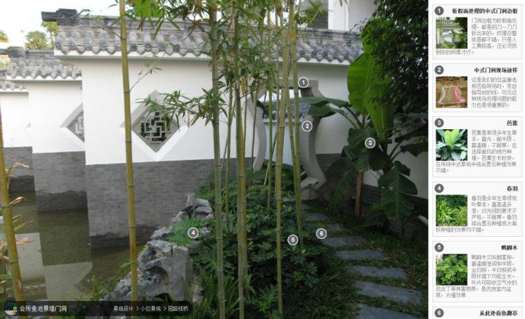 104组精彩植物配置案例(实景效果+植物品种)_99