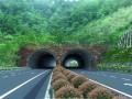 隧道工程监理投标书(129页)