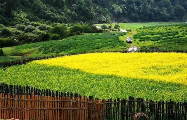 中国最受欢迎的35家顶级野奢酒店_6