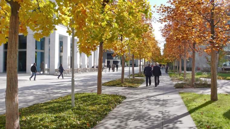 诺华公司总部办公景观