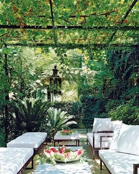 不同风格的庭院植物配置,超详细!_11