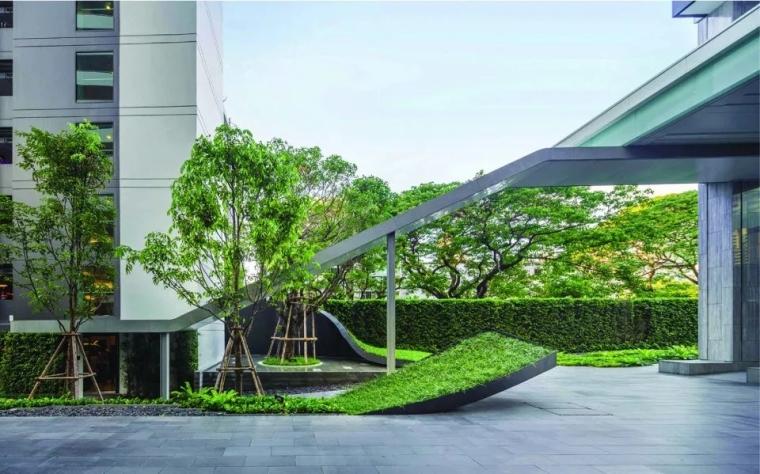 植物-园林植物配置|园林景观植物图鉴-园林植物设计