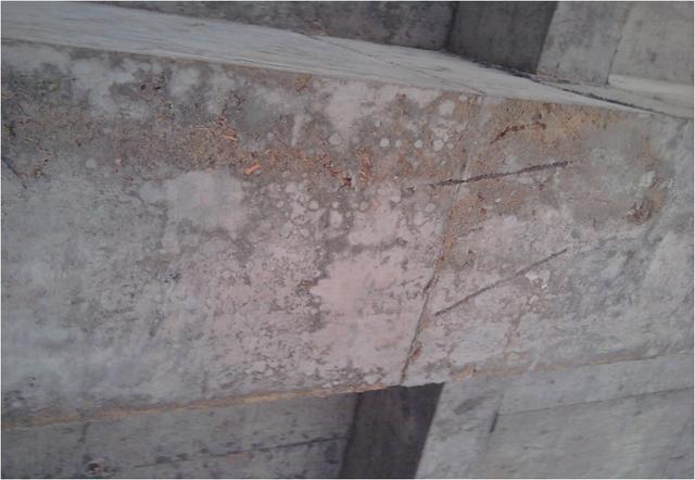 混凝土施工常见质量通病及优秀做法照片_10
