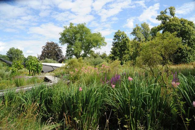 法国鲁昂EANA公园景观设计_14