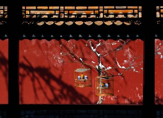 框景·只有中国人才懂的诗情画意_7