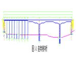 连续刚构桥毕业设计计算书