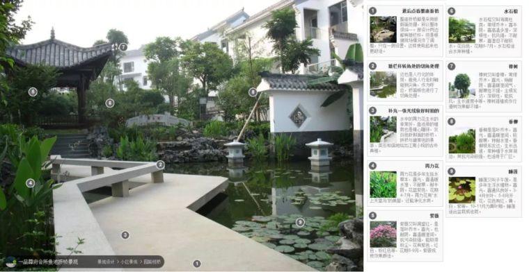 104组精彩植物配置案例(实景效果+植物品种)_94