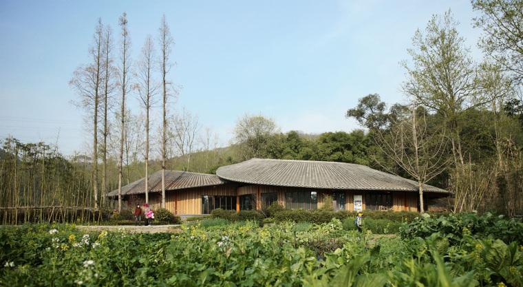 乡野建筑青瓦房社区服务中心高清大图