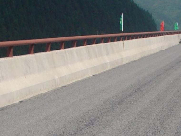 浅谈桥梁水泥混凝土面层裂缝的成因及处理措施