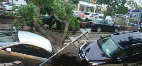 深圳路面塌陷导致车辆损坏,竟是排水明沟基础不牢缘故?