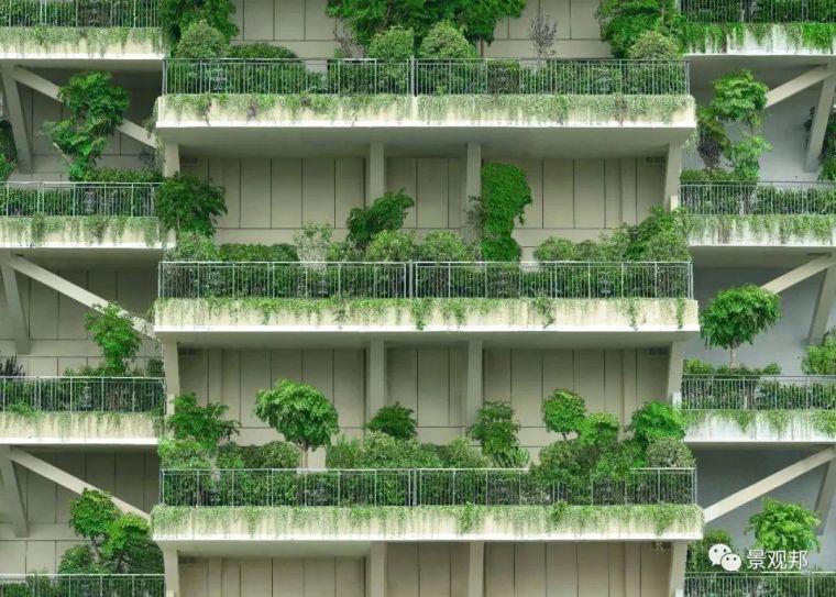 第四代住房已落地,实现空中花园新童话