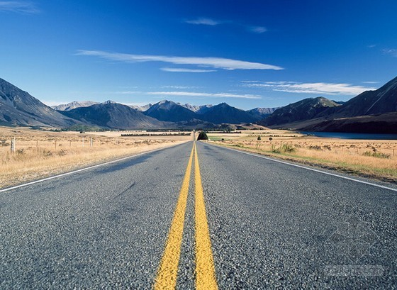 [山东]道路管网工程(绿化部分)施工招标文件