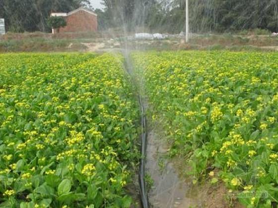 [浙江]高效节水灌溉工程建设方案