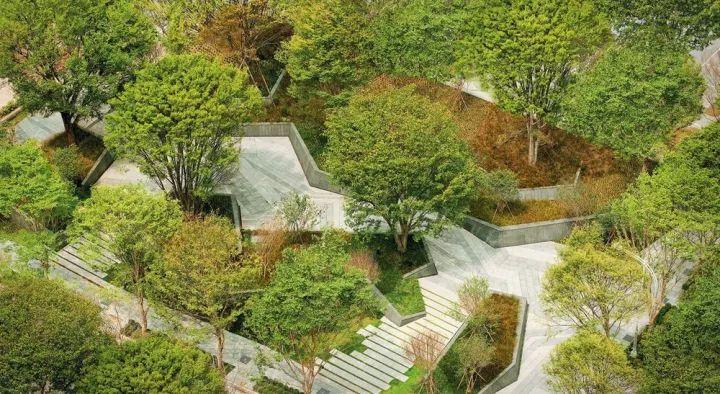 树池的配置方法和设计形式_33