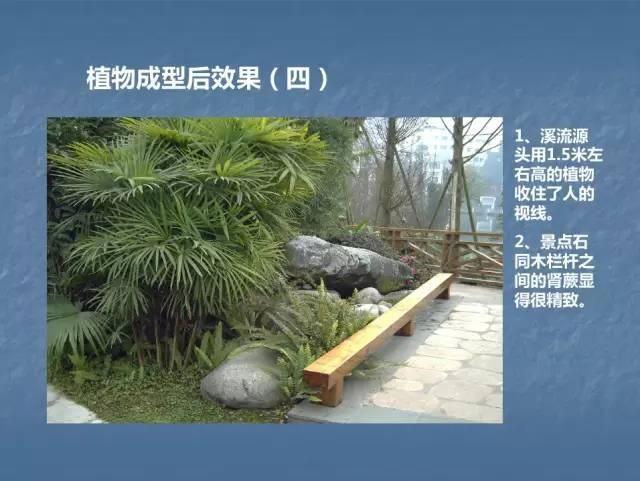 龙湖景观施工工艺标准效果(让你更懂现场)--软景篇_36
