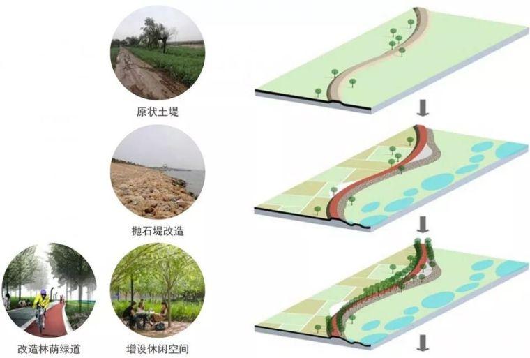 案例 渭柳湿地公园_10