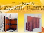 【全国】超高层建筑模板技术(共42页)