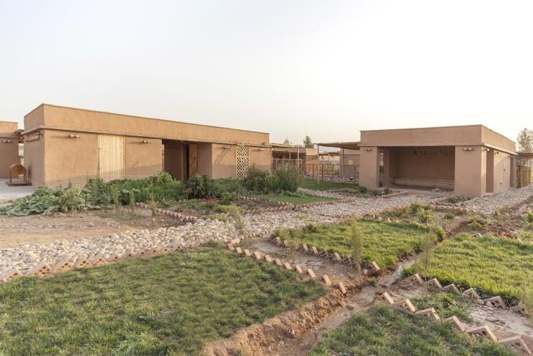 伊拉克动物辅助疗养中心-1