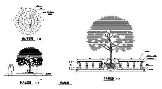树穴详图2-4