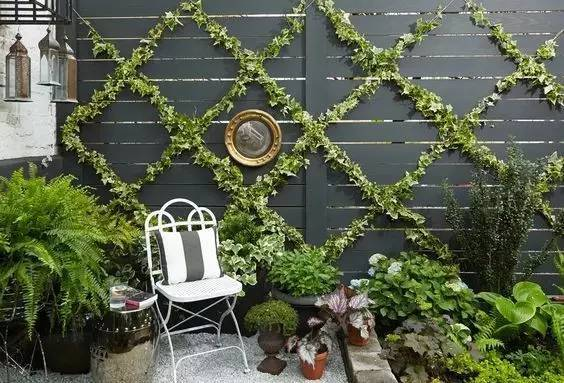 在简单的绿植墙旁小憩一会