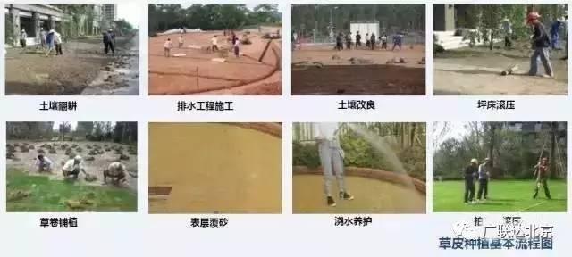 景观工程施工经验总结_22